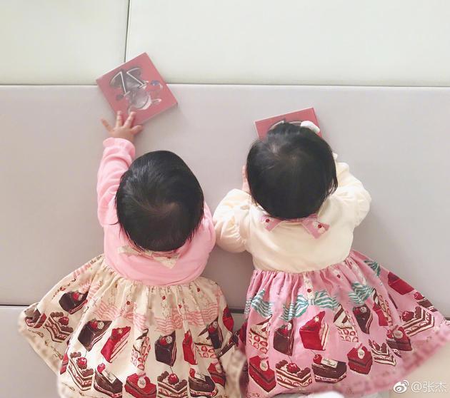 张杰与谢娜的双胞胎女儿