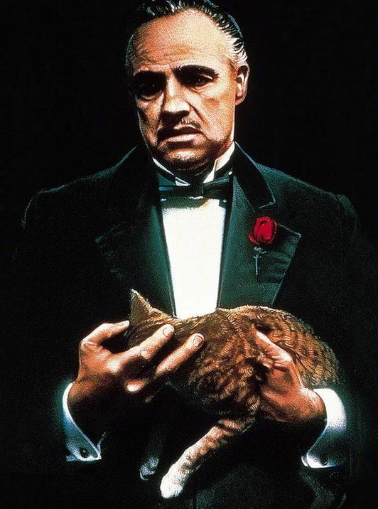 埃文斯管理的派拉蒙曾推出《教父》等经典电影