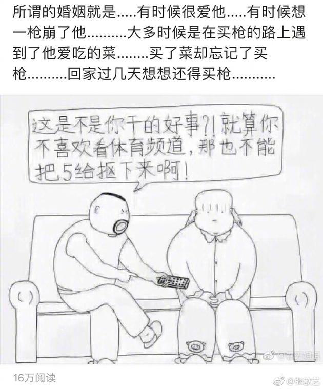 张歆艺配图