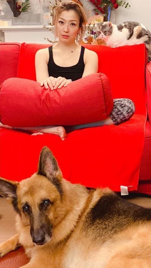 郑秀文晒爱狗照。