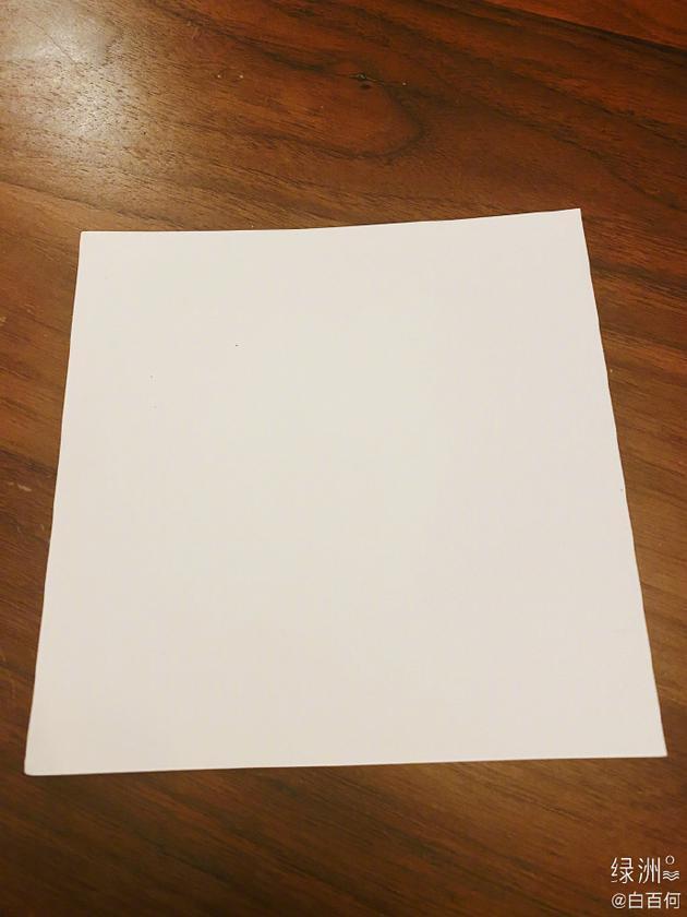 白百何绿洲晒一张白纸:一个半小时练条线都没画
