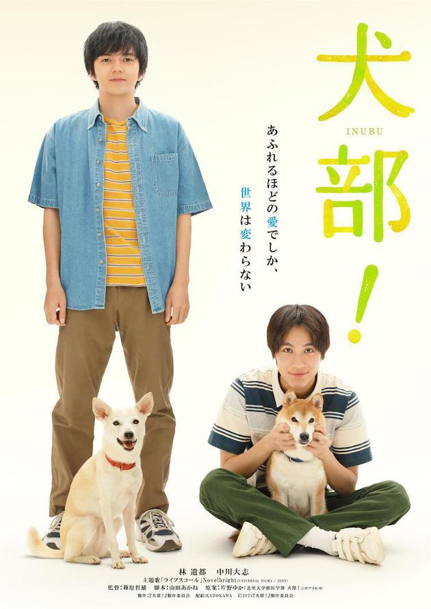 《犬部!》海报