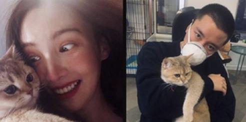 网传二人同款猫咪