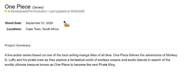 真人版《海贼王》将于9.1在开普敦开机