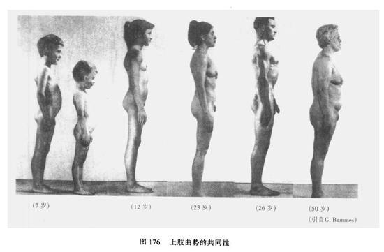 �身上肢在自下垂的静态情况下,上臂部分相对于垂直,假如下臂部分则前倾曲势明显,手臂整体构成前摆趋势