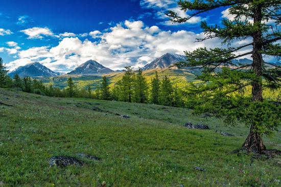 穿越蒙古国 图片源自pexels