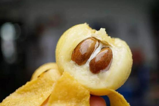 除了三蝦面,東山的白玉枇杷也是當季食物。