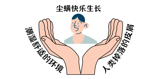 When is the pot picked?插图6