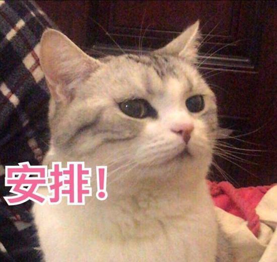 http://www.znhjo.tw/xiebaopeishi/425875.html