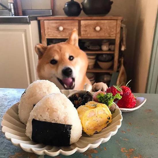 總該給我吃了吧?