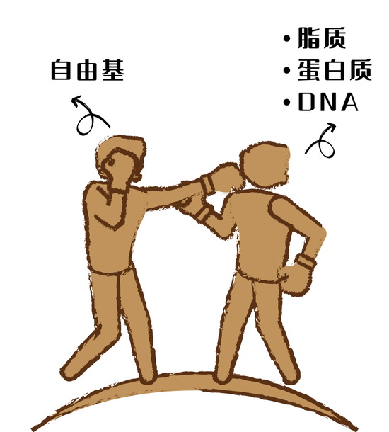 Sensitive muscles don't deserve functional products? It's hard for sensitive muscles to resist.插图8