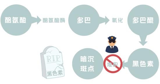 Ingredient pickpocketing with nicotinamide is equal to mastering wealth code?插图6