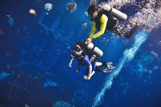 """编辑亲身体验在""""失落的空间""""水肺潜水"""