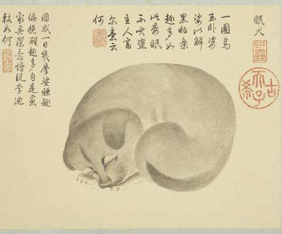 清 金廷標 《眠犬》
