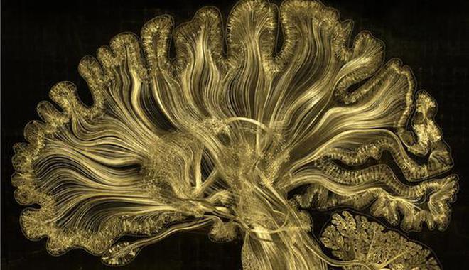 融合人工智能與藝術 16國120余件藝術品將亮相國博