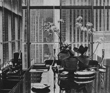1978年,Halston所在办公室一角