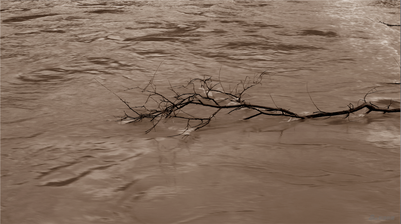 湯南南個展 | 《黃河青山》發起關于當代生活探討