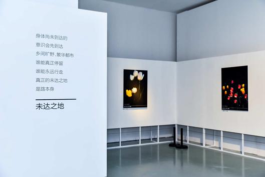"""华为P40系列联手今日美术馆  开启""""超感知影像""""艺术盛宴"""