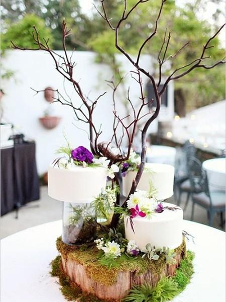 树枝作为蛋糕支撑