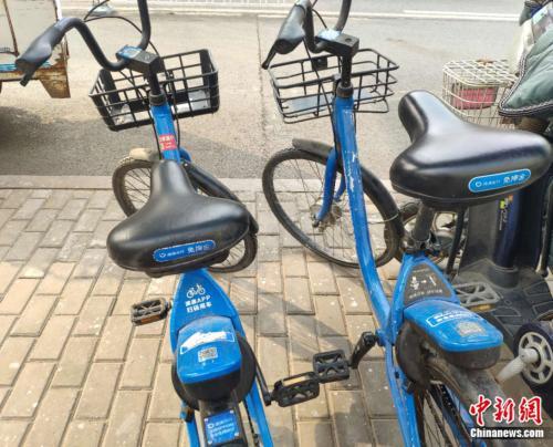 北京街头的小蓝单车。张旭 摄