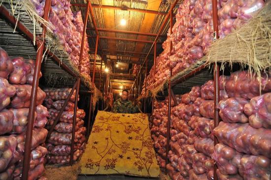 央视:山东栖霞苹果采购价几近翻番 收购商到处找苹果