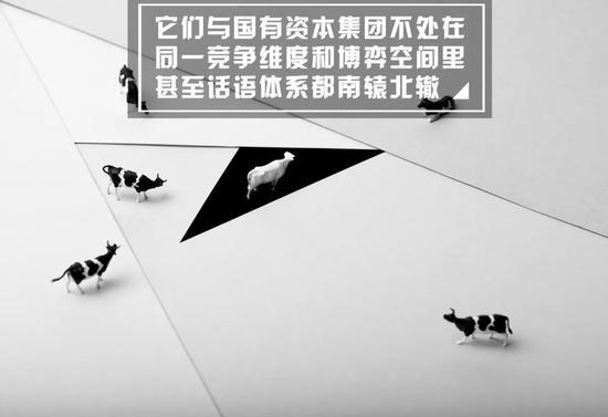 中国产业所有制改革最大变局:新半壁江山景象出现