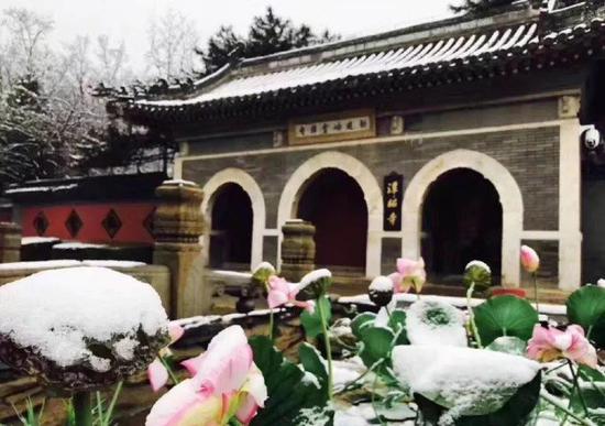 北京文化旗下景区潭柘寺
