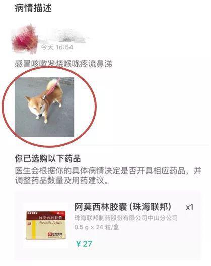 """▲宠物照片充当处方通过""""丁香医生""""审核"""