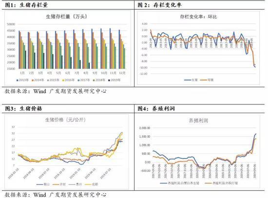富力:今年利润肯定大于去年 会在深圳布局旧改项目