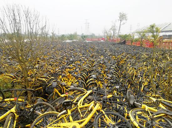2018年11月28日,成都龙泉驿区大面镇的一处ofo幼黄车停车场图片来源:每经记者 靳程度 摄