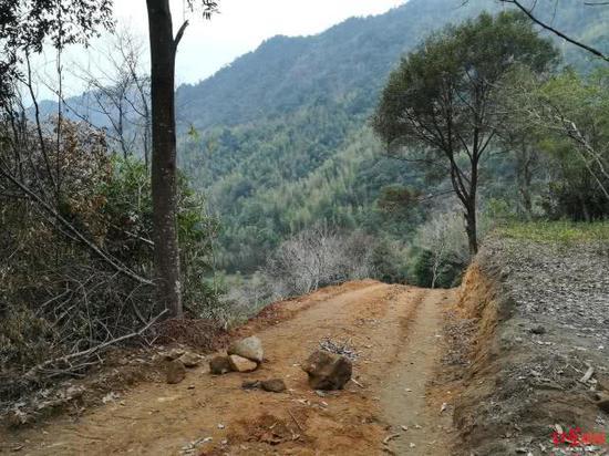 武夷山农夫山泉开挖路段将恢复植被:复原至少需百年
