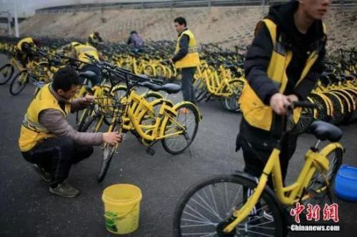 原料图:ofo幼黄车。中新社记者 佟郁 摄