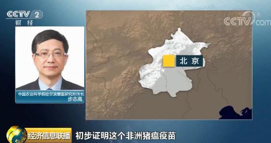 中国农科院:猪瘟疫苗已完成了实验室研究