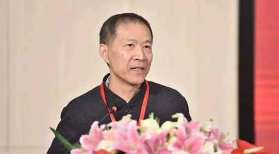中国知名经济学家华生评一窝蜂式保护民企:过犹不及 造成道德风险