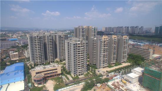 马光远:446家房企破产究竟意味着什么?