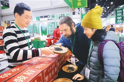 11月8日,2019北京国际茶产业博览会在北京国家会议中心开幕,一些老字号茶企齐聚。展会上,茶友在观看一款红茶。   陈晓根摄(人民视觉)