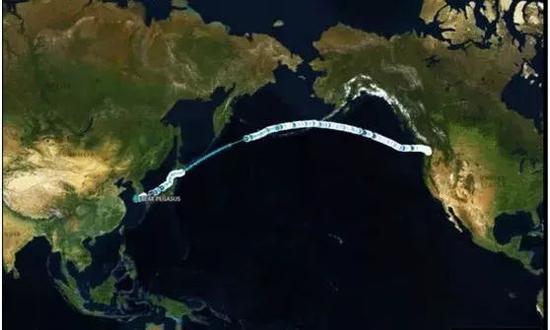 央视:向大连港狂奔的那艘美国大豆船 没赶上最后时点