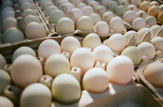 研究发现每天吃一个鸡蛋 可降低心脏病和中风风险鸡蛋