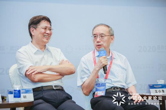 王小鲁:资本形成率占GDP的比重过高对维持长期持续的经济增长不利