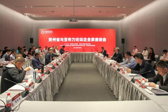 贵州省副省长蔡朝林与亚布力中国企业家论坛部分会员企业座谈