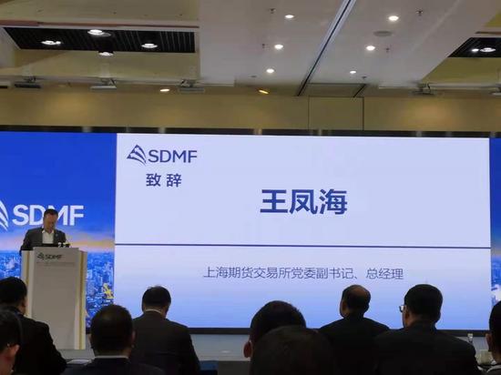 王凤海:推进合成橡胶期货上市 进一步丰富完善橡胶行业的风险管理工具
