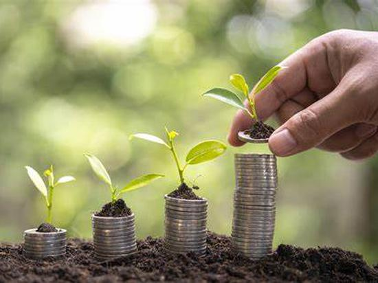 放眼低碳投资机会,不限于可再生能源行业