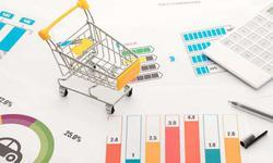 張岸元:以穩定居民收入為抓手 擴大有效消費需求