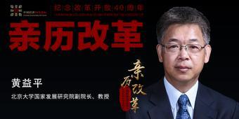 黄益平:要稳汇率还是人民币国际化?