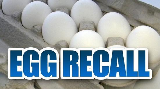 美国召回逾2亿枚鸡蛋 因沙门氏菌污染鸡蛋