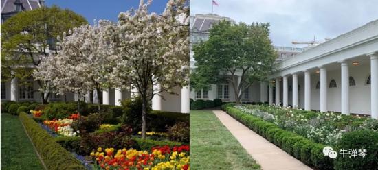 最惊艳对比照 特朗普一家这样改造了白宫