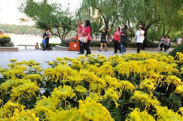 福州:主要展区基本成形 市民可到西湖公园赏菊花