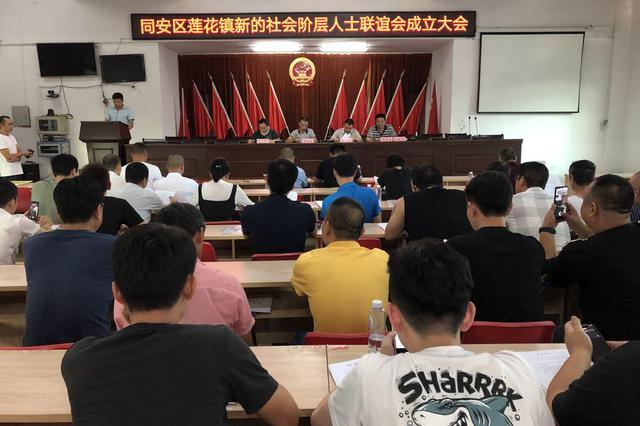 莲花镇新的社会阶层人士联谊会成立大会顺利召开