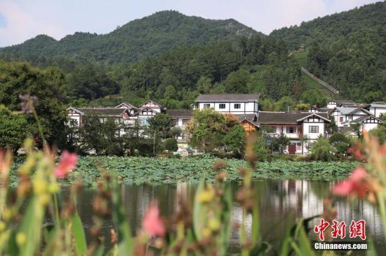 原料图:生态柔美的中国乡下。 瞿宏伦 摄