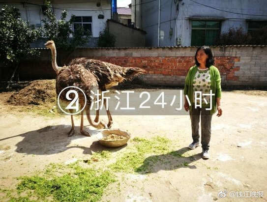 北京市政府北地区人员病例912学校从3月席感染新冠先期开放 2日起放
